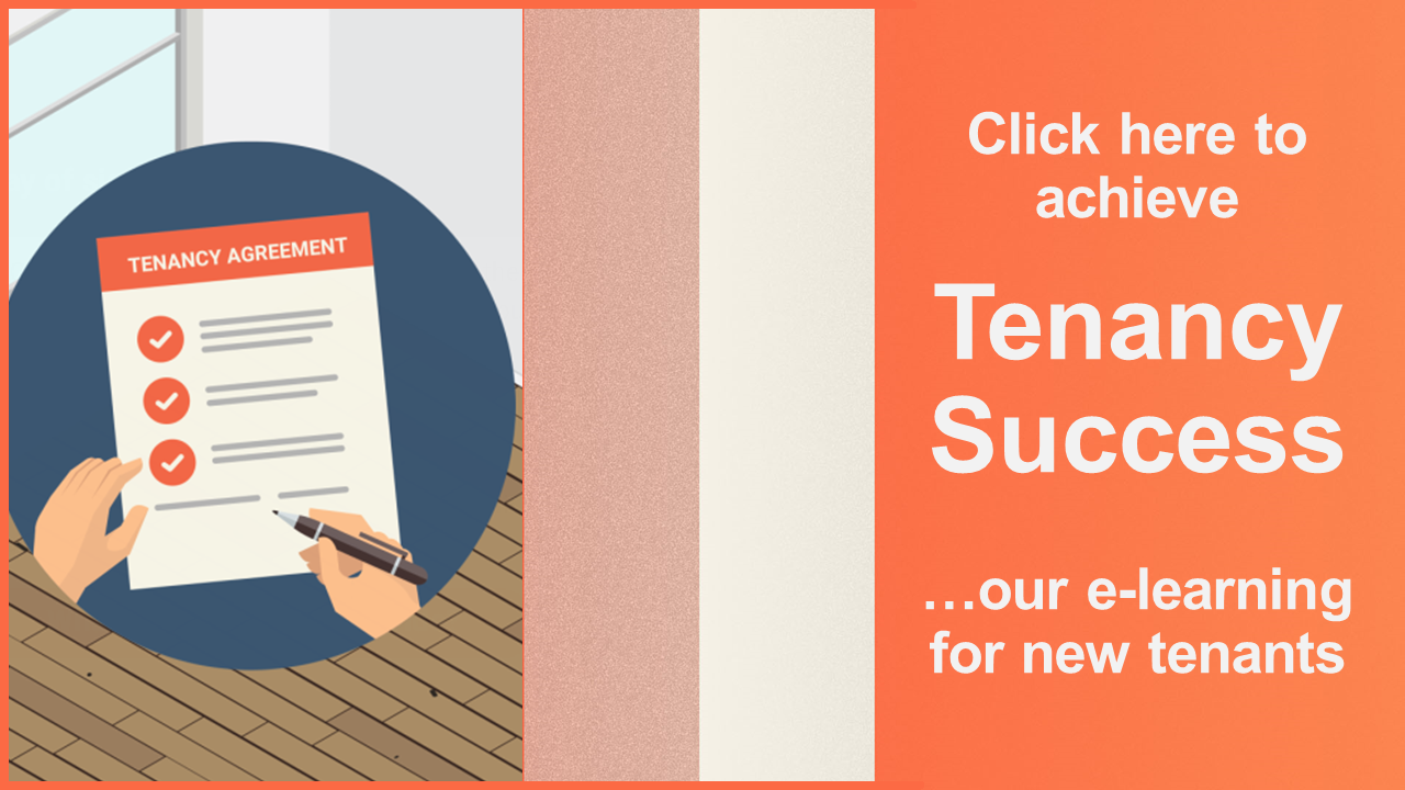 Tenancy Success Promo.png